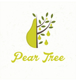 pear tree with pear fruit vector image