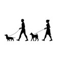 silhouette man and women walking dogs vector image vector image