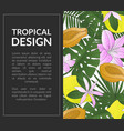 tropical design banner template with bright exotic vector image