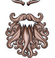 beard mustache and eyebrows vector image