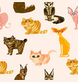 cartoon cats seamless pattern bree vector image vector image