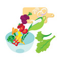 cooking salad collection background vector image