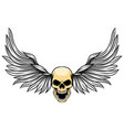 dashing wings with human dead skull for vector image vector image