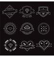 Logo design elements Vintage retro style Arrows vector image