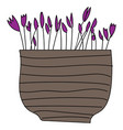 simple purple flowers in brown flower pot on vector image vector image