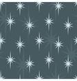 Star summer night vector image