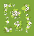 apple and cherry flower and leaves set realistic vector image vector image