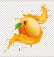 apricot fruit in juice splash vector image vector image