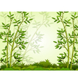 beautiful bamboo forest background vector image vector image