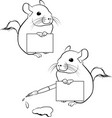 cute chinchilla with paper poster outline vector image vector image