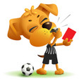 football referee dog shows red card soccer vector image