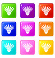 garden flower icons set 9 color collection vector image vector image