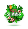 hello summer typographical background with vector image