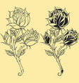 Roses Oldskool Tattoo style element vector image vector image