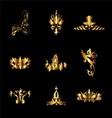 Set of Golden Vintage Elements for Design vector image vector image