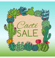 succulents sale cacti green plants vector image vector image