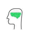 thin line head with brain like education vector image