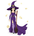 beautiful witch vector image vector image
