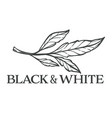 black and white floral design foliage monochrome vector image
