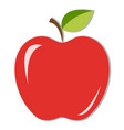 juicy red apple with green leaf and shadow vector image