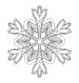 Ornamental winter vector image vector image