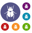 scarab icons set vector image vector image