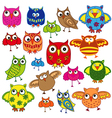 Set of eighty colourful owls vector image vector image