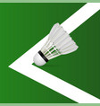 badminton courts with shuttlecock vector image