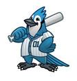 blue jay baseball cartoon mascot vector image vector image