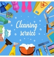 Cleaning service flat vector image vector image