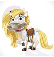 Cute cartoon white baby horse vector image vector image