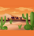 desert scene with cactus and sunset vector image
