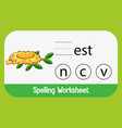 find missing letter with nest vector image vector image