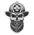 skull in fireman hat vector image