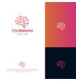 brain tech logo template vector image