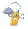 chef with food penne pasta character cartoon vector image vector image