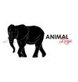 Elephant icon logo symbol