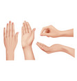 hands realistic gestures human palms and fingers vector image