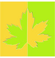 maple leaf on a yellow green background vector image