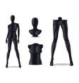 plastic female mannequin vector image