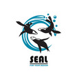 sea seal emblem vector image