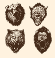Set wild animals vector | Price: 1 Credit (USD $1)