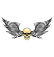 sharp wings with skinny head dead vector image vector image