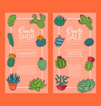 succulents decorative banners cacti green plants vector image vector image