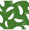 Pattern Silhouette Cucumber vector image