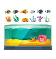 aquarium bundle exotic fishes seaweeds and vector image vector image