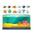 aquarium bundle exotic fishes seaweeds vector image vector image