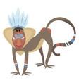 cartoon baboon indian a vector image
