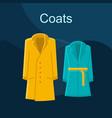coats fashion flat concept icon vector image