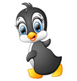 funny penguin cartoon vector image vector image